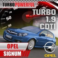 Turbo elaborato Opel Signum...