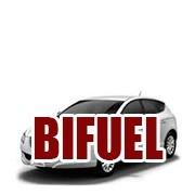 1.4 Bifuel